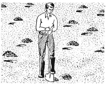 Правила отбора почвы на пробу